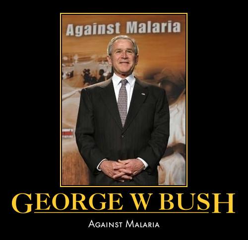 funny George W Bush demotivational poster