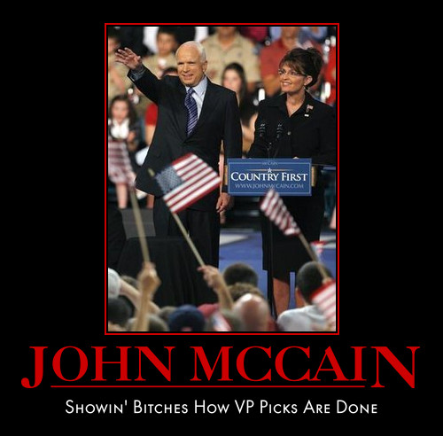 funny John McCain Sarah Palin demotivational posters poster political demotivation